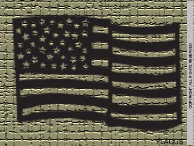 US Flag - FLAGUSP