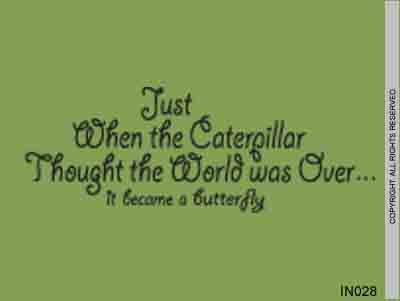 Just When The Caterpillar Thought The World Was Over... - IN028