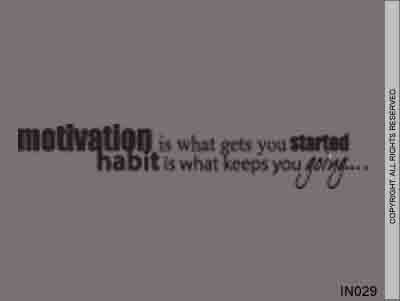 Motivation Is What Gets You Started Habit Is What Keeps - IN029