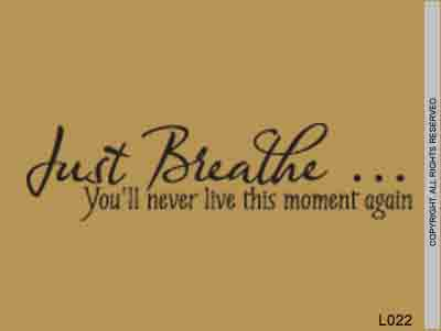Just Breathe... You'll Never Live This Moment Again - L022