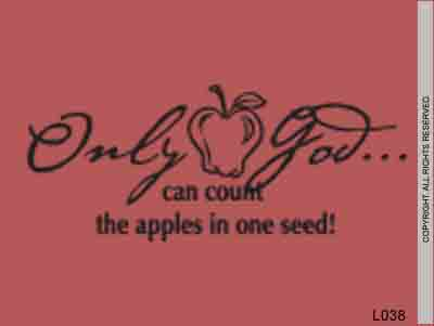 Only God Can Count The Apples In One Seed! - L038